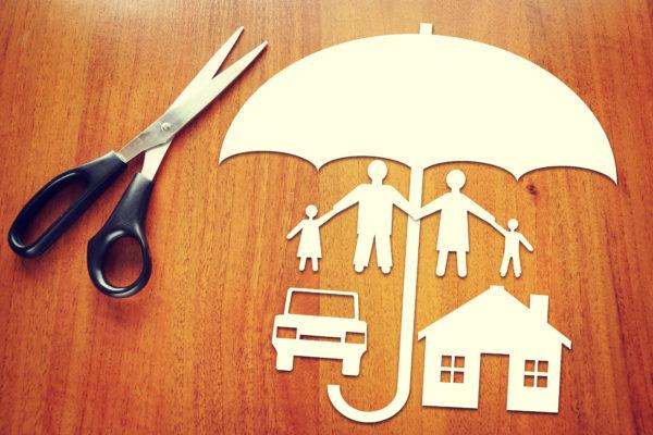 forsikringer guide